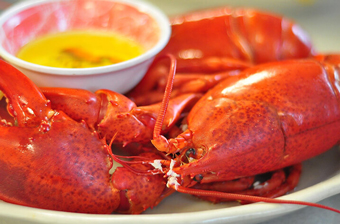 boston restaurants - lobster dinner